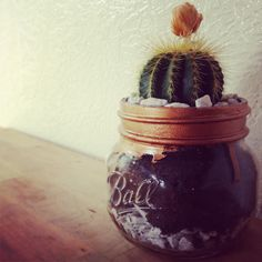 Gilded a jar with liquid gold leaf for a cactus planter