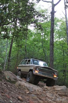 Another Wagoneer in yet another natural environment.