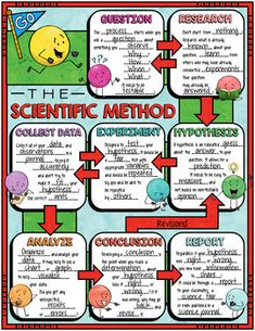 The Scientific Method Doodle Notes for Science with PowerPoint & Quiz - Tamara Ingram - BuyThenNow Science Notes, Science Notebooks, Science Fair, Science Lessons, Life Science, Science Experiments, Earth Science, 8th Grade Science, Elementary Science