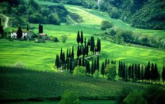 Chianti near Florence Italy. This is where I am going to retire. :)