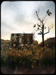 RAMÓN GRAU. Director of Photography: Trocitos de una ciudad . Barcelona