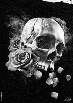 skulls and roses …