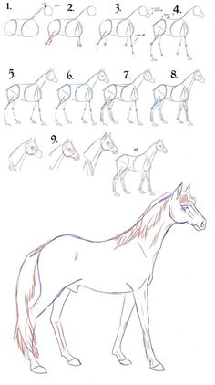 Draw a horse step by step - 9 Art Draw To Practice