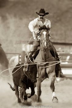 PICTURE PERFECT! MOST AMAZING ROPING PICTURE I'VE EVER SEEN!!!(: