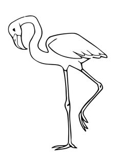 Pink Flamingo Bird Coloring Page