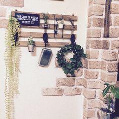 100均で壁にグリーンを。|LIMIA (リミア)