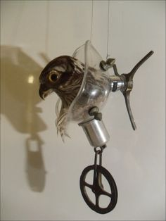 You Can't Keep a Good Bird Down- Rogue Taxidermy by Rainey J Dillon (on Etsy now) Faux Taxidermy, Rogues, Bird, Creative, Etsy, Vintage, Birds, Vintage Comics, Primitive