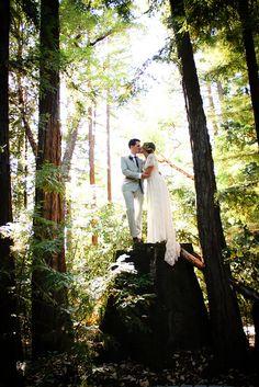 Wedding in the redwoods