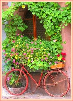 .green and pink -fav combo....