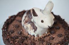 Raw brown and white rabbit cake