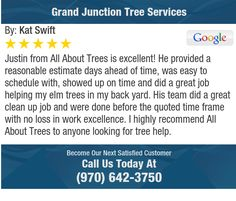 Justin from All About Trees is excellent! He provided a reasonable estimate days ahead of...