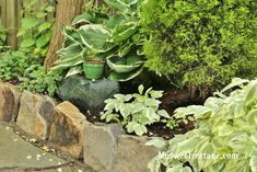 DIY garden edging: E