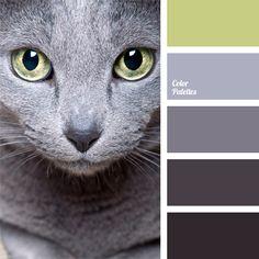 Color Palette  #106
