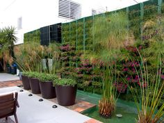 Quer saber Como fazer um Jardim? - conheça diversas ideias criativas e personalize o seu jardim com muito amor e bom gosto, criando um ambiente perfeito.