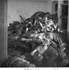 Dachau Concentration Camp in Germany - bodies of prisoners after the camp's liberation in 1945.