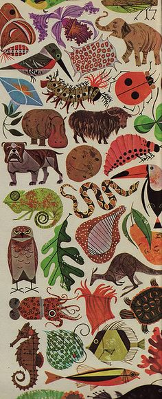 Charley Harper illustration from a 1960's biology book / love this style of illustration!