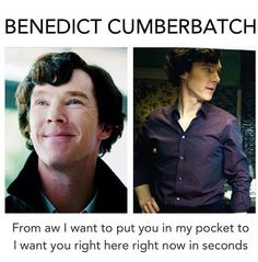Basically ;) Benedic Cumberbatch. Pocket sized to bed sized.! <--- previous pinner said it best :)