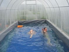 the pool at the cottage in the greenhouse