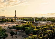 The Westin Paris - Vendôme -Luxury Hotel Paris. Best neighborhood to stay in Paris with family, find the top Paris hotels for families of 5, best arrondissement to stay in Paris for families. Luxury hotels and suites for families in the city of lights.