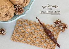 How+To+Crochet+The+Picot+Trellis+Stitch+-+Easy+Tutorial+-+Hopeful+Honey+5.jpg (1600×1143)