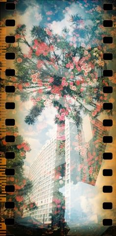 Double Exposure with the Sprocket Rocket