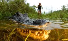The Everglades national park is heaven for lovers of the great outdoors, with loads of nature to watch, tons of trails for hikers, and sailing, snorkelling and diving for watersports fans – plus beachcombing and relaxing for those who want a 'proper' holiday