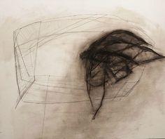 Joyce Westrop, Shifting wing (2012)