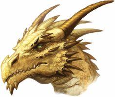 The elder- golden dragon, respected by all.