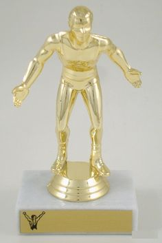 Wrestling Trophy - 23-510G