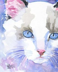Ragdoll Cat Lámina de Pintura Original Watercolor - 8x10 Sobre la impresión: . Este gato Ragdoll abierto lámina edición es de una pintura original por Ron Krajewski