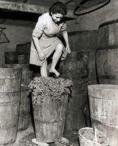 la verdad que es bien anti higiénico esta forma de hacer vino.