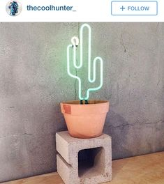 @shop_thecoolhunter
