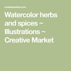 Watercolor herbs and spices ~ Illustrations ~ Creative Market