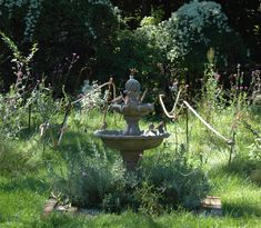 Birds loving my fountain by my meadow!