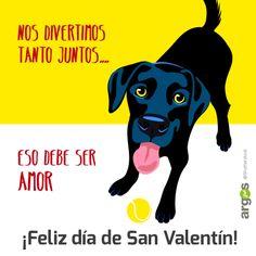 El amor de nuestros perros por San Valetín