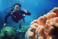 En oplevelse uden lige!  Great Barrier Reef Cairns  #scuba #scubadiving #australia #australien #greatbarrierreef #peace #peaceful #reef #beautifuldestination #beautifuldestinations #beautiful #oceanview #ocean #cairns #diving by camilla10er http://ift.tt/1UokkV2