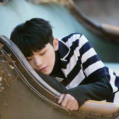 jihoon, the angel who can never be mine. Carat Seventeen, Seventeen Woozi, Seventeen Debut, Dino Seventeen, Hip Hop, Vernon Chwe, Day6 Sungjin, Cuerpo Sexy, Kpop