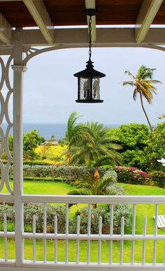 Top 10 things to see and do in St Kitts - explore the Botanical Garden at Fairview