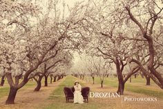 Elisa and Robby's Engagement Session in Red Bluff, CA