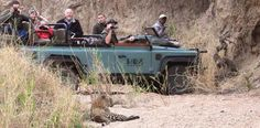 There is an early morning game drive and a late afternoon/evening game drive over an area of approximately 24 700 acres (10 000 hectares).  Guests can expect to see some, if not all, the Big 5, as well as many other species of game and some of the over 300 species of birds.