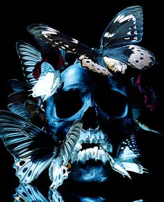 SKULL And Butterflies.