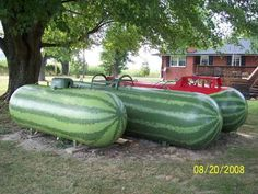 Giant propane tanks in the yard? If you can't hide it, feature it! Propane Tank Art, Propane Tank Cover, Watermelon Painting, Heating Oil, Garden Projects, Garden Ideas, Diy Projects, Garden Landscaping, Garden Pool