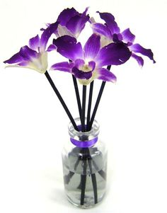 Create Your Own Aromatic Reed Diffuser Oils