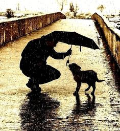 celiabasto/..a random act of kindness...