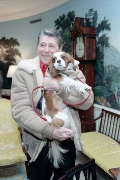 "President Reagan holding ""Rex"" in the Diplomatic Reception Room. Rex was a Cavalier King Charles Spaniel who lived to the age of 13 with the Reagan family. Cavalier King Charles Dog, King Charles Spaniel, Cavalier King Spaniel, Rei Charles, Game Mode, Spaniel Puppies, Poodle Puppies, Mans Best Friend, Chihuahua"