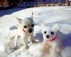 snowman dog - Google 検索