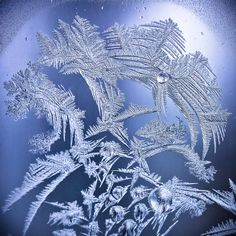 Frost on The Window -