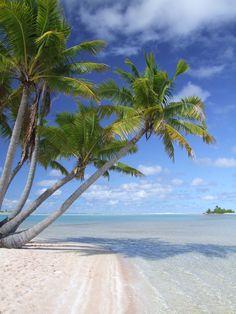 Fakarava deserted beach and palms Bora Bora, Tahiti, Travel Pictures, Travel Pics, Tropical Beaches, France, French Polynesia, Tropical Paradise, Ocean Beach