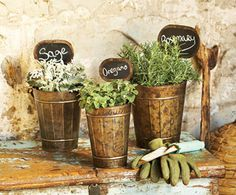 Cute way to plant herbs - $29.00 (for set of 3)