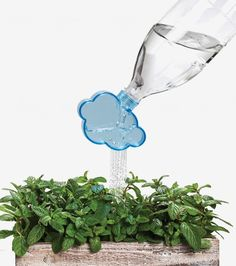 Rainmaker : bouchon arrosoir